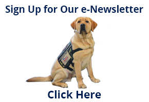 Sign Up for Newsletter Link