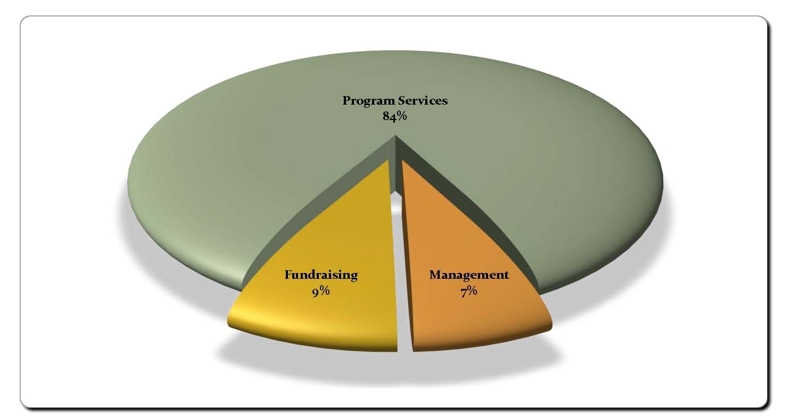 Pie chart - 84% towards programs, 9% fundraising, 7% management.