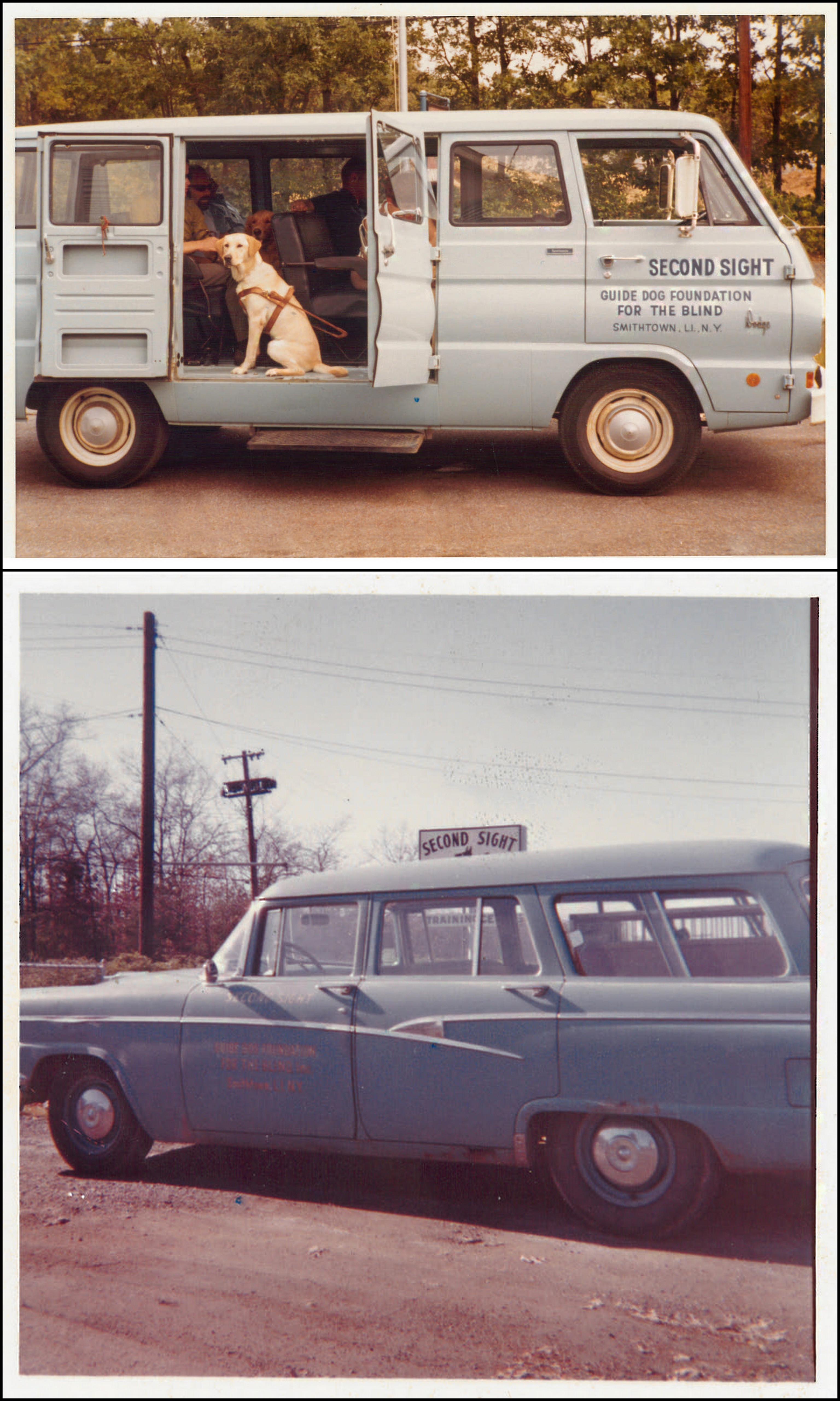 Two photos show Foundation vehicles. The top one is a powder blue van from the 60's, the side cargo doors are open and inside sits a yellow Lab in harness. The photo below that shows a parked 1950's station wagon. Both vehicles say 'Second Sight - Guide Dog Foundation' on the front doors.