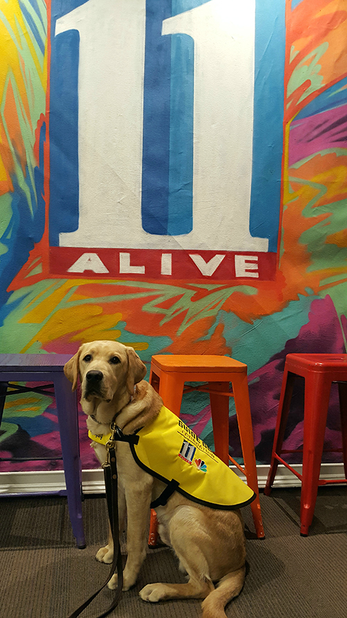 Izzy in coat in front of the 11alive logo.