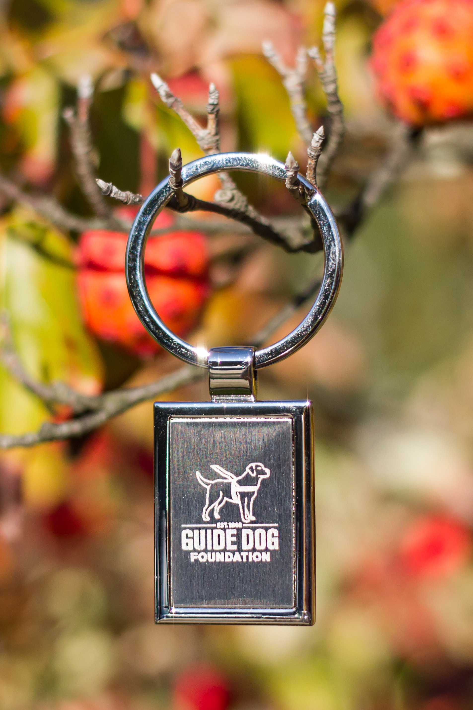 Rectangle Key Chain (Guide Dog Foundation)